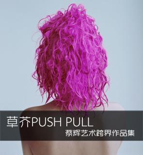 草芥Push pull   蔡辉艺术跨界作品集