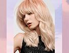 歌薇马卡龙迷雾色系玫瑰粉红呵护浪温氛围