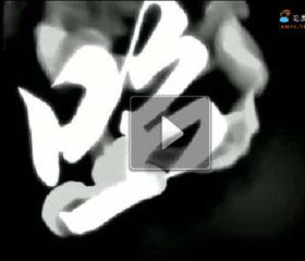 2011第三届国际沙龙美发节宣传片